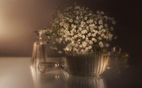 Картинка стекло, цветы, букет, бокалы, белые