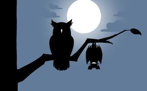 Картинка moon, minimalism, night, clouds, tree, bat, artist, digital art, artwork, branch, owl, silhouette, simple background, …