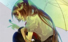 Картинка девушка, дождь, улитка, Starry Sky, Starry★Sky, визуальный роман, аниме (2011)
