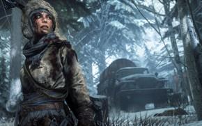 Картинка Девушка, Деревья, Снег, Лес, Машина, Square Enix, Lara Croft, Crystal Dynamics, Расхитительница Гробниц, Rise of …