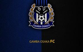 Картинка wallpaper, sport, logo, football, Gamba Osaka