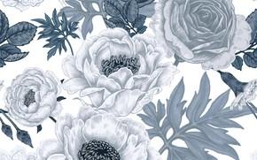 Картинка белый, цветы, фон, узор, pattern, seamless, бесшовный