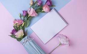 Картинка цветы, фон, розовый, букет, pink, flowers, purple, эустома, eustoma