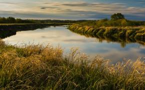 Картинка лето, трава, облака, деревья, река, берег, водоем
