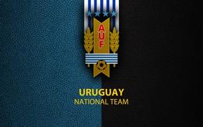 Картинка wallpaper, sport, logo, football, Uruguay, National team
