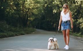 Картинка дорога, лес, девушка, солнце, деревья, природа, юбка, собака, майка, очки, прическа, блондинка, поводок, прогулка, ножки, …
