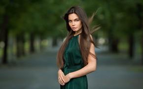 Картинка взгляд, девушка, парк, фото, волосы, брюнетка, красотка, боке, Федоренко Антон