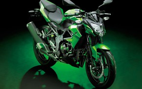 Картинка фото, Мотоцикл, Kawasaki, Worldwide, Z250SL