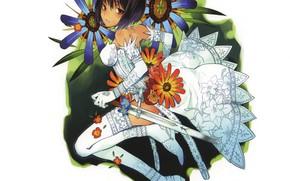 Картинка стрижка, меч, девочка, корсет, белое платье, карие глаза, белые чулки, перчатки локтя, цветочный орнамент, by …