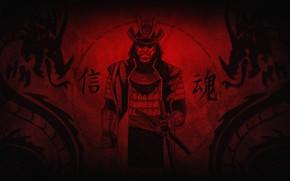Картинка катана, доспехи, самурай, иероглифы