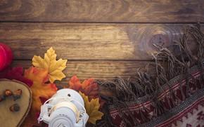 Картинка осень, листья, дерево, colorful, шарф, фонарь, wood, желуди, background, autumn, leaves, lantern, maple