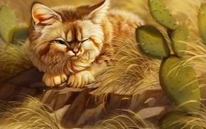 Картинка кот, кактус, by Pixxus