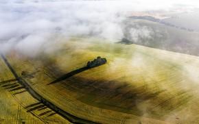 Картинка поле, лето, туман