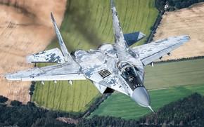 Картинка Поле, Лес, Истребитель, Фонарь, Миг-29, Пилот, Кокпит, ВВС Словакии, ИЛС, ОЛС, HESJA Air-Art Photography