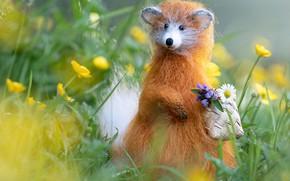 Картинка цветы, животное, игрушка, рыжий, зверек, корзинка, милота, войлок, войлочная