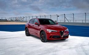 Картинка авто, Alfa Romeo, бордовый, Stelvio Quadrifoglio