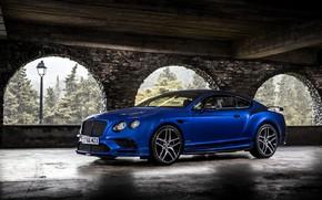 Картинка Bentley, Continental, 2017, Supersports