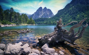 Картинка лес, небо, облака, горы, корни, озеро, камни, скалы, берег, склоны, вершины, пень, дно, ели, сосны, …
