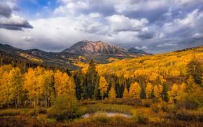 Обои осень, лес, небо, облака, деревья, горы, озеро, холмы, вершины, золотая осень, желтая листва