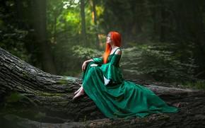 Картинка лес, девушка, природа, поза, дерево, волосы, рыжая, Виктория Вижанская
