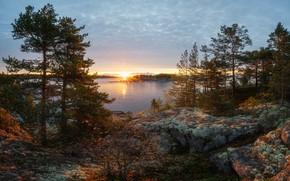 Картинка осень, солнце, лучи, деревья, пейзаж, закат, природа, озеро, камни, Ладожское озеро, Ладога
