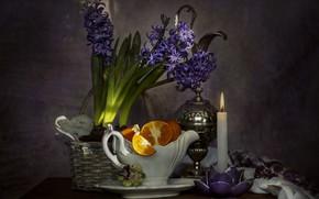 Картинка цветы, апельсин, свеча, натюрморт, гиацинты