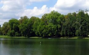 Картинка пруд, Франция, Дворец Фонтенбло