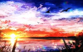 Картинка небо, вода, солнце, природа, чайки, заат