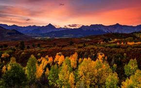 Картинка осень, лес, деревья, закат, горы, холмы, вечер, ярко, яркие цвета, планы, золотая осень, контрастно