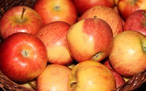 Картинка крупный план, яблоки, фрукты, корзинка, много, красно-желтые