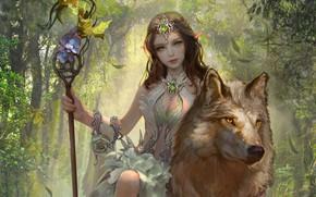 Картинка взгляд, девушка, животное, волк, фэнтези, арт, эльфийка, сидит