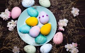 Картинка цветы, яйца, colorful, пасха, flowers, eggs, easter