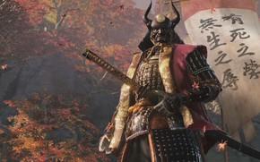 Картинка Samurai, Shadows Die Twice, Sekiro