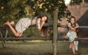 Картинка лето, детство, девочки, деревня, сестры, плетень