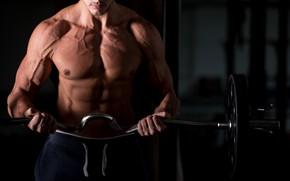 Картинка поза, мышцы, abs, muscle, штанга, bodybuilder, пресс, бодибилдер