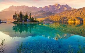 Картинка лес, деревья, горы, природа, озеро, Germany, Alps, Lake Eibsee
