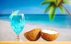 Картинка пляж, лето, отдых, кокос, коктейль, summer, beach, каникулы, fruit, drink, coconut, vacation, tropical, palm
