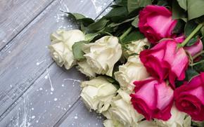 Картинка розы, букет, розовые, белые
