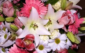 Картинка цветы, лилия, букет