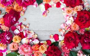 Картинка цветы, сердце, розы, colorful, heart, pink, flowers, romantic, petals, roses