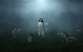 Картинка девушка, туман, волки