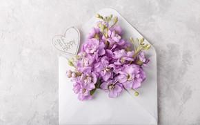 Картинка цветы, букет, сердечко