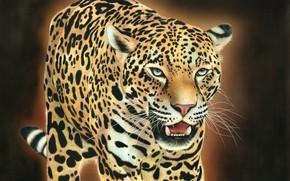 Картинка кошка, морда, леопард, оскал