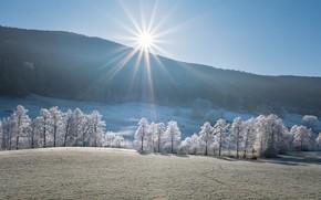 Картинка зима, иней, поле, лес, солнце, лучи, свет, снег, деревья, горы, природа, туман, холмы, утро, склон, …
