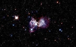 Картинка Stars, Nebula, LMC, Gas clouds, Stellar nursery, Constellation of Dorado, Massive stars, 160 000 light-years, …