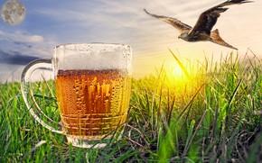 Картинка небо, степь, орел, фотошоп, пиво, доброе утро