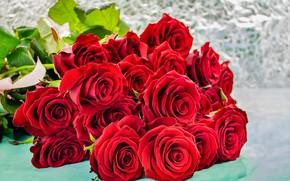 Картинка розы, букет, красные, бутоны
