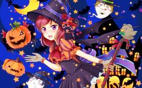 Картинка приведения, тыква, призраки, хеллоуин, ведьмочка