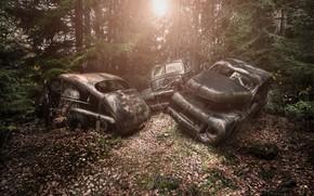 Картинка лес, машины, лом
