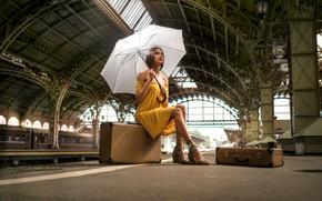 Картинка взгляд, девушка, поза, вокзал, зонт, платье, Антипин Денис